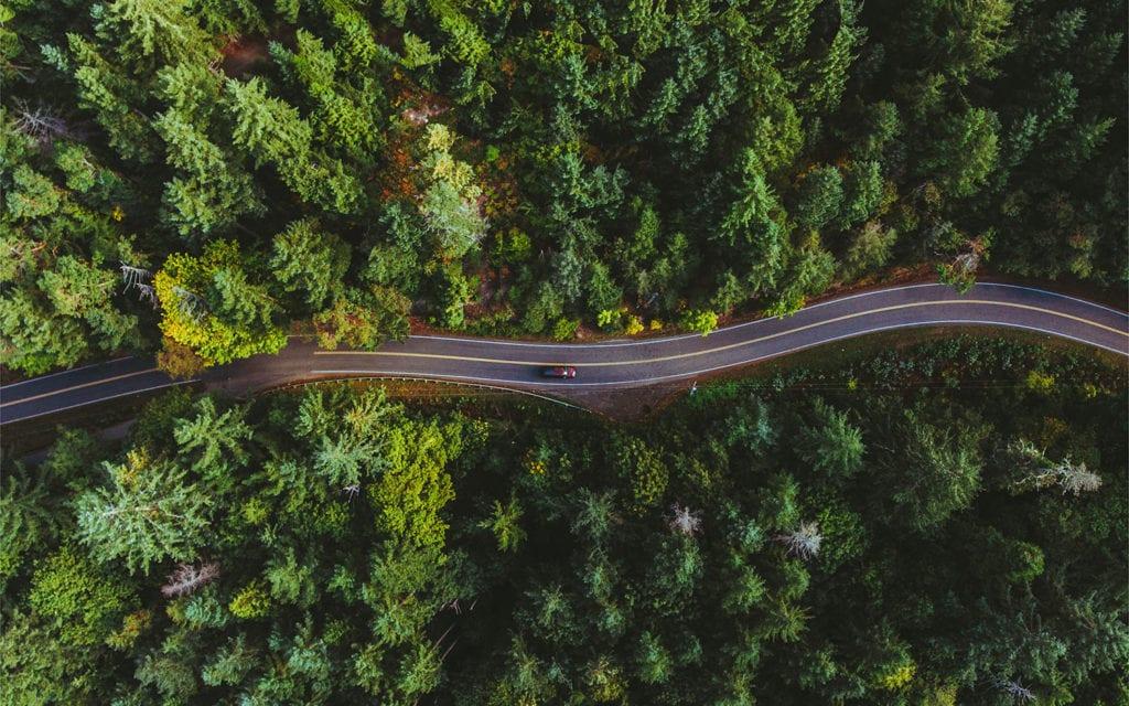 Création site internet vitrine pour l'Arbre Vert auto