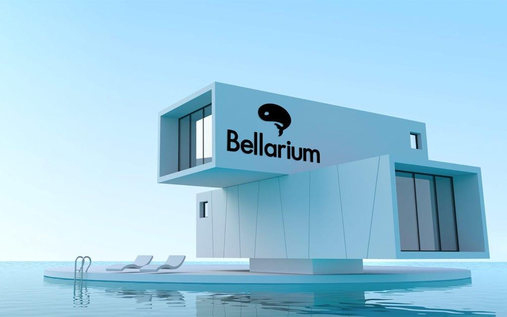 Création site internet vitrine Bellarium France